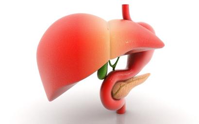 6 Triệu chứng thường gặp nhất khi gan bị nhiễm độc